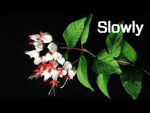 Abc Tv How To Make Bleeding Heart Vine Flower From Crepe Paper Slowly Craft Tutorial Youtube Paper Flowers Paper Flower Kit Crepe Paper Crafts