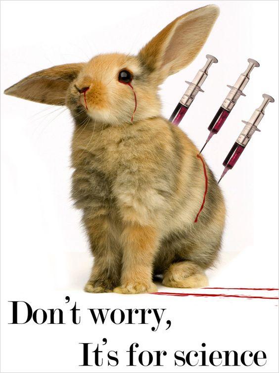 stop animal testing...:
