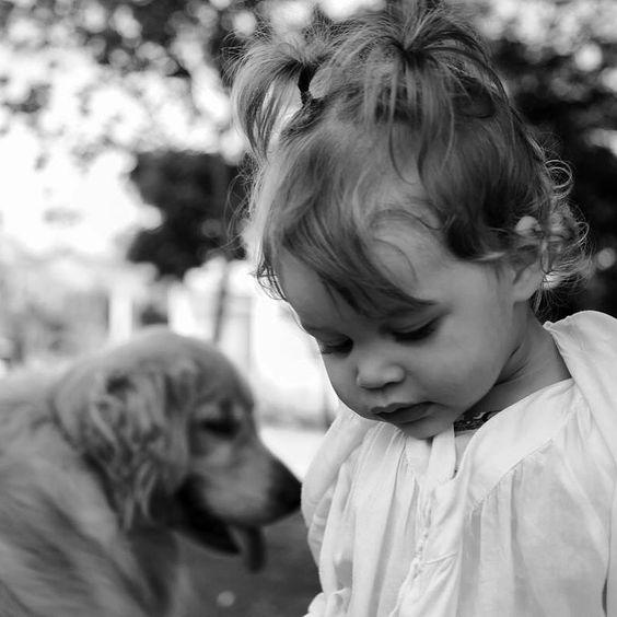 Ensaio criança com cachorro Foto:Sandra Leandro