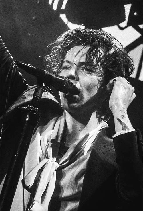 Wet Styled Curls Harry Styles Haircuts Harrystylesaesthetic Wet Styled Curls Harry Styles H Harry Styles Haircut Harry Styles Photos Harry Styles Pictures
