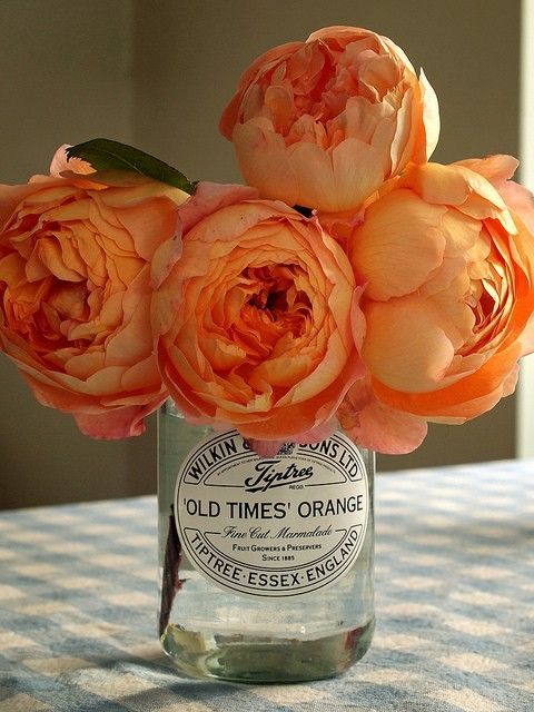 orange english roses in an english marmalade jar.  beautiful!