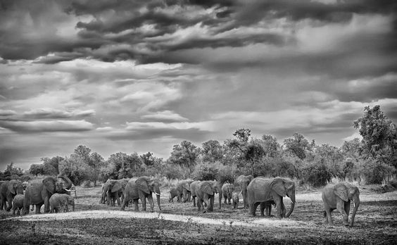 Walk to water by Marc MOL on 500px