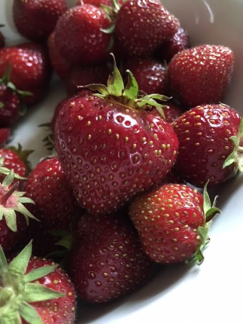 Creekside Cottage: Homegrown Strawberries