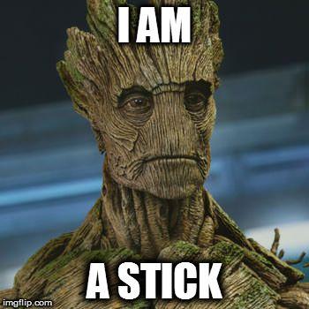 Stick meme