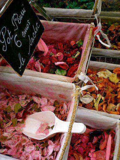 Flower petals, Grasse, France