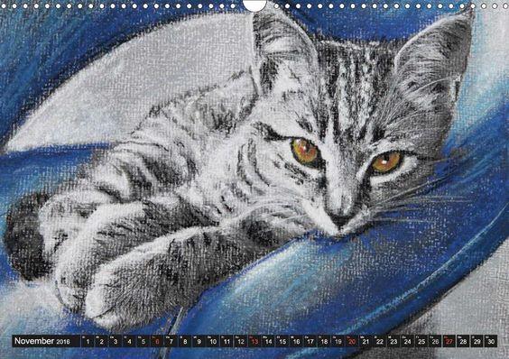 Samtpfoten - Katzen in Pastell - CALVENDO Kalender von Uschi Felix