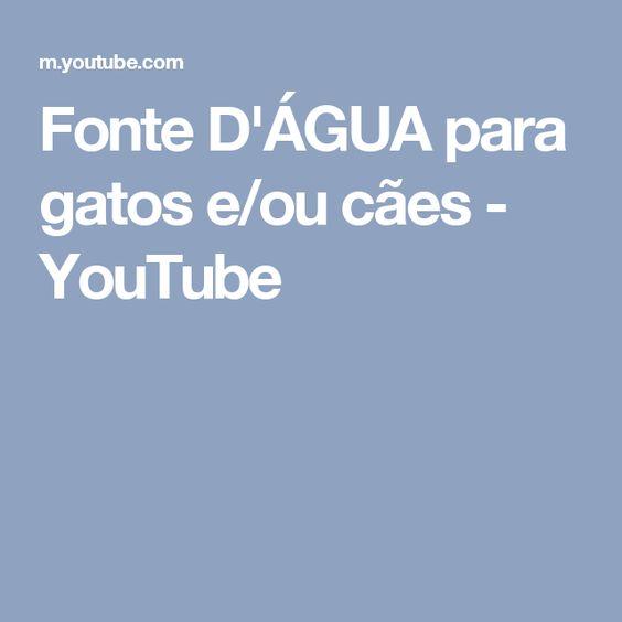 Fonte D'ÁGUA para gatos e/ou cães - YouTube