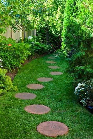 Choosing the path to lawn perfection. #getridofmoles