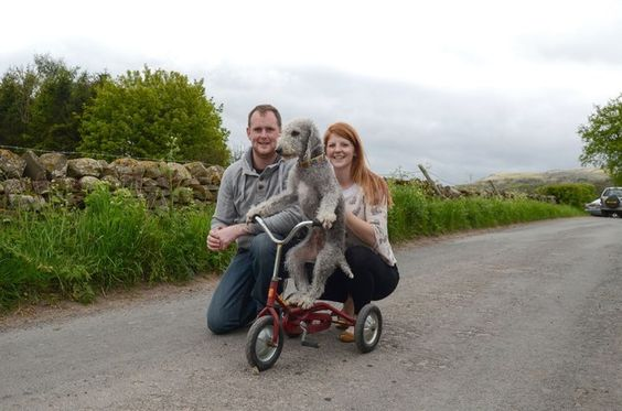 Barry's owners, Wayne Sowerby and Kate Hayllar, from Cumbria, said they first put their pet on a skateboard when he was a puppy. | Nothing To See Here, Just A Dog Riding His Bike Like A Complete Boss