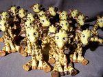 giraffe group photo by melinaminotti
