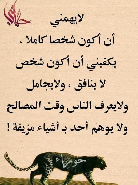 Pin By فلسطينية ولي الفخر On روائع الحكم Queen Quotes Arabic Quotes Funny Quotes