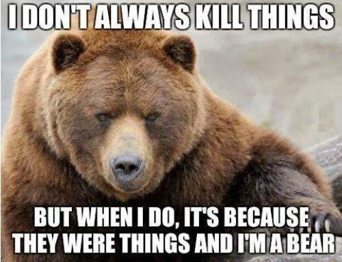 Funny Grizzly Bear Kill Things Refrigerator Tool Box Locker Magnet Bear Meme Funny Bears Bear