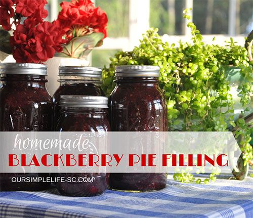 Canned blackberry pie filling recipe   Not the thorns in my finger tips or the 100 degree heat can keep me out of my berry patches this time of the year.  Late June always means blackberry pies,  jam and ice cream, and to us that all means summer!  http://oursimplelife-sc.com