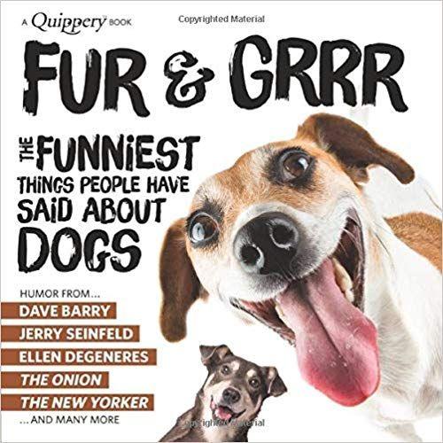 Tumblr Clever Dog Dog Jokes Funny Dog Memes