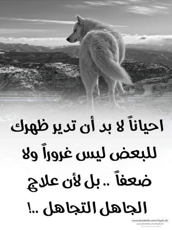Pin By فلسطينية ولي الفخر On روائع الحكم Qoutes Animals Words Of Wisdom