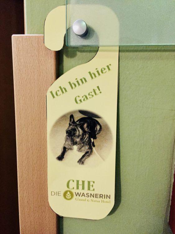 Insidertipp Hundeurlaub Bei Der Wasnerin In Bad Aussee Teil 1