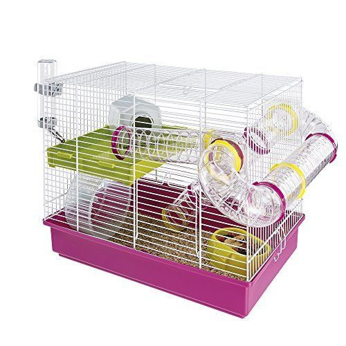 Hamster Cages And Habitats Amazon Com Cool Hamster Cages