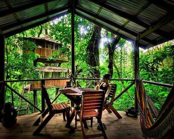 Ubicada en la selva tropical de Costa Rica, la Finca Bellavista es una comunidad pionera de casas árbol autosostenibles.: