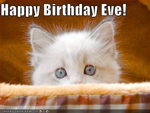 Happy Birthday Eve Happy Birthday Eve Happy Birthday Cat Birthday Eve