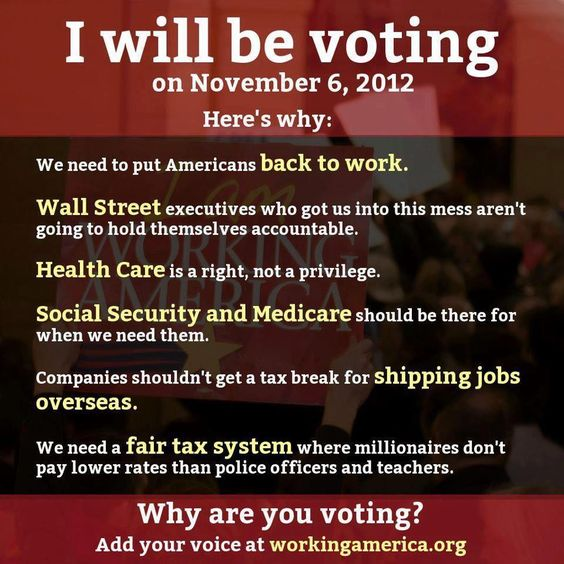 Why are you voting?