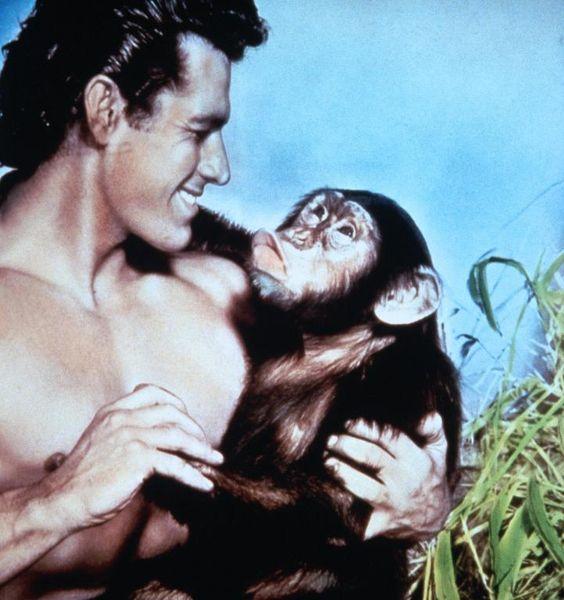 Tarzan und die verschollene Safari - Bilder - Cinema.de