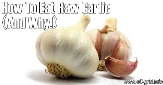 Garlic is incredibly valuable for health - and is best consumed raw. However not many people want to just crunch down garlic cloves on their own. Way too intense. So you'll need some recipes that enable you to handle your quota of raw garlic... [read more]