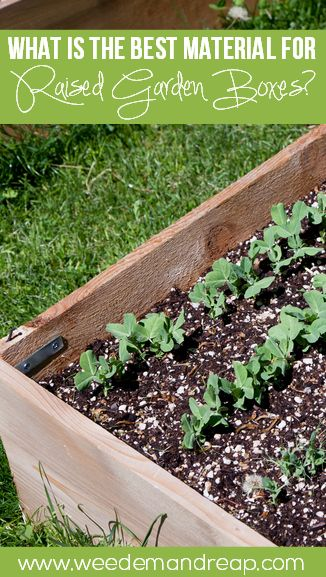 The best material for raised garden boxes garden boxes - Safest material for raised garden beds ...