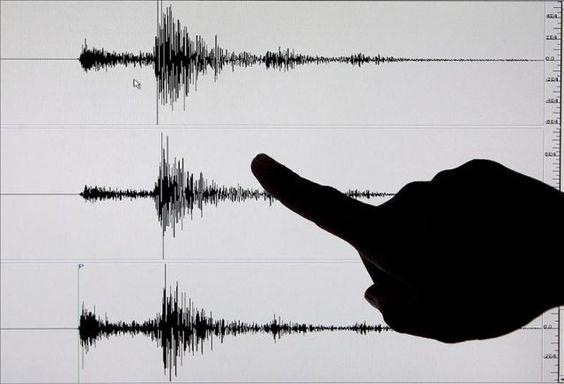 Se registra temblor de 4.8 grados en el país