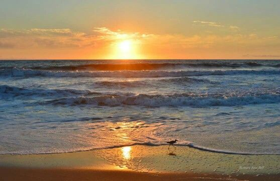 Outer Banks NC Local Artists Facebook post 8/10/15:  Sunrise, Nags Head, NC.  Photographer: Barbara Ann Jump-Bell.
