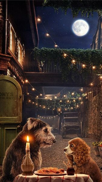 Lady and the Tramp Movie 2019 4K HD Mobile, Smartphone and PC, Desktop, Laptop wallpaper (3840x2160, 1920x1080, 2160x3840, 1080x1920) resolutions.
