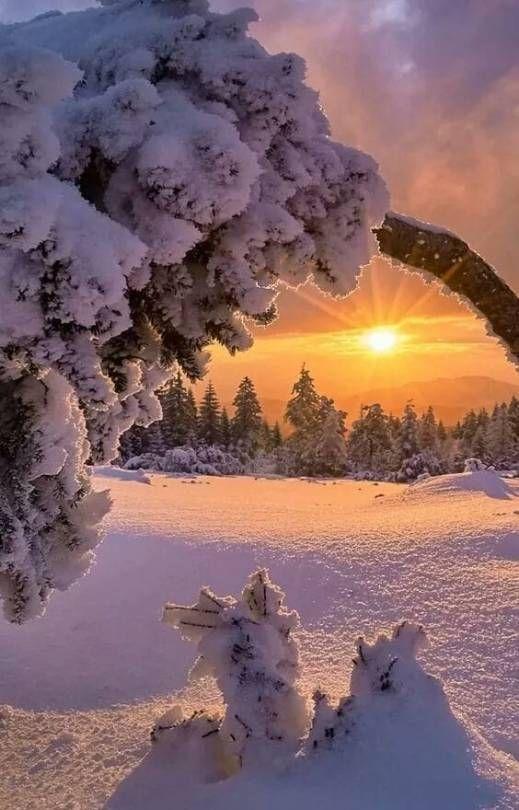 Beautiful Dreams Winter Scenery Winter Landscape Winter Scenes