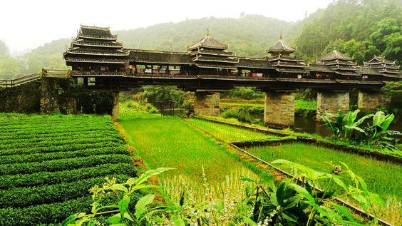 chengyang-wind-rain-bridge-guizhou.jpg (700×394)