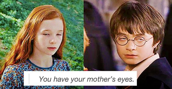 Bless the Harry Potter fandom. -- click link in case of desperately needing to laugh your ass off