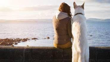 Les bienfaits santé d'un animal domestique