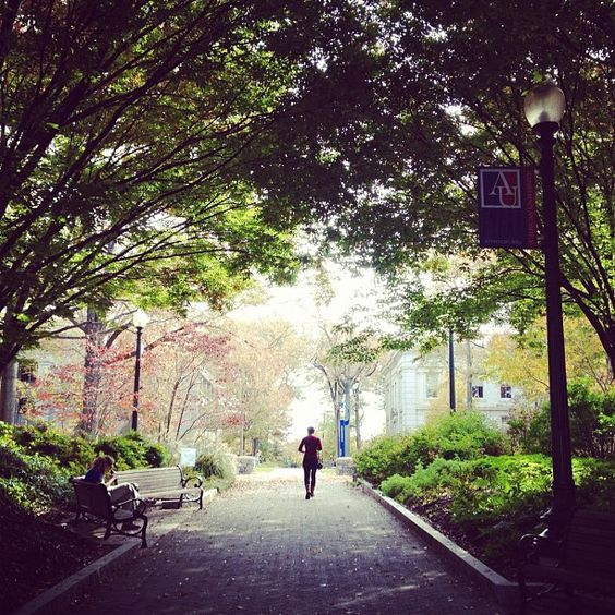 5 Reasons Why I Chose To Go To American University