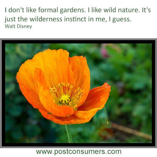 #QuoteoftheDay - Wild #nature