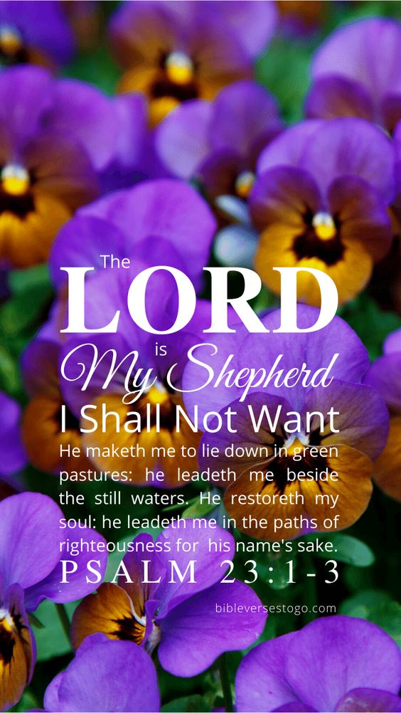 Pansies Psalm 23:1-3 – Bible Verses To Go