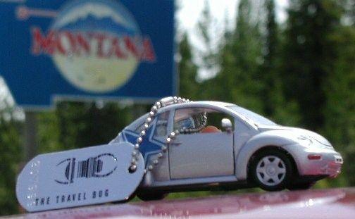 Travel bug Bug in Montana.  Geocaching > Hide and Seek a Geocache > Geocache Gallery