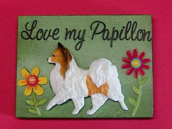 Love my Papillon wooden plaque. Sable.  Mixed media- handmade-decal-scrapbook.