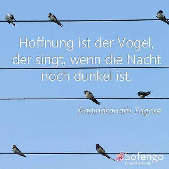 Hoffnung ist der Vogel, der singt, wenn die Nacht noch dunkel ist.- Rabindranath Tagore