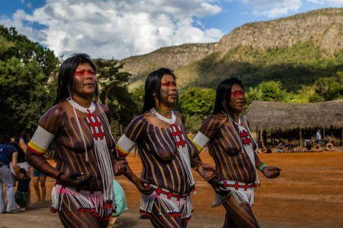 Fulni-ô Brazilians, via Encontro de Culturas. Entre o sol e a poeira da Chapada, a energia da tradição de diversos povos fez a terra tremer na abertura da VIII Aldeia Multiétnica. Oficialmente inaugurada nesta segunda-feira (21), durante o XIV Encontro de Culturas Tradicionais da Chapada dos Veadeiros, a Aldeia segue até sábado (26) e reúne diversos povos indígenas e os grupos Kalunga e Tribo do Arco-Íris.Dentre as muitas manifestações culturais, houve a do povo Fulni-ô. Sua dança, muito…