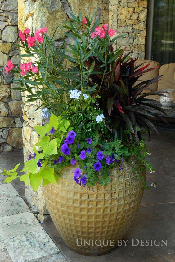 Unique By Design L Helen Weis Container Gardening