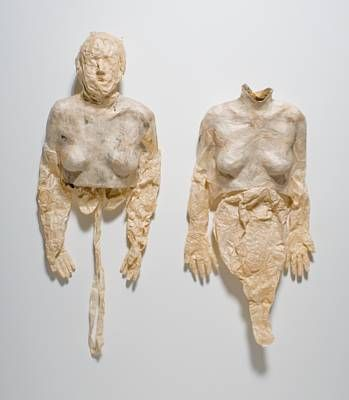Image result for kiki smith soft bodies
