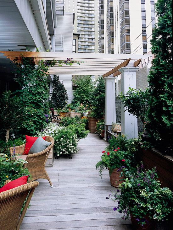 Balcony and rooftop gardening planters rooftop gardens for Terrace pergola