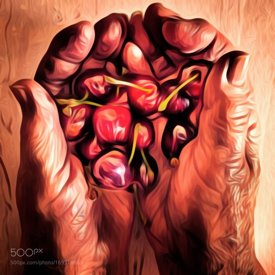 Cherries by JuanFigueirido #food #yummy #foodie #delicious #photooftheday #amazing #picoftheday