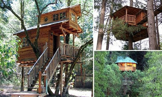 Coolest tree house ever!!!!