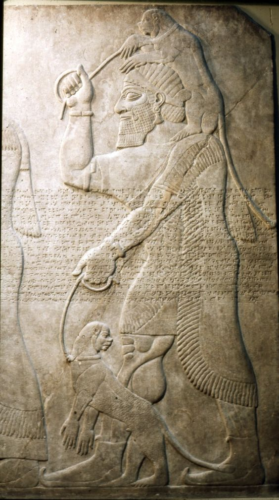Tribute bearer, may be Phoenician, brings a pair of apes, wall panel relief, North West Palace, Nimrud, Kalhu, Iraq, neo-assyrian, 865BC-860BC: