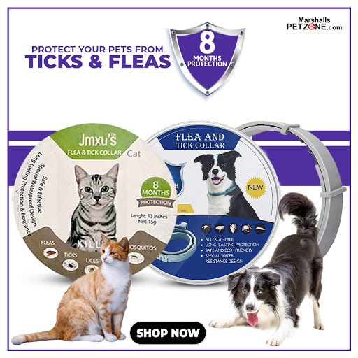 Jmxu S Flea And Tick Collar For Dogs At Lowest Price In 2020