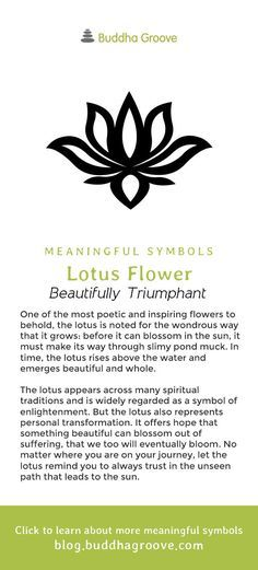 Meaningful Symbols – A Guide to Sacred Imagery - Lotus Flower - Beautifully Triumphant