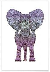 Purple Elephant - Premium Poster